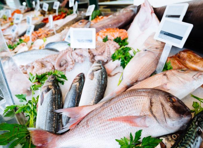 Come riconoscere il pesce fresco? Consigli per non farsi ingannare