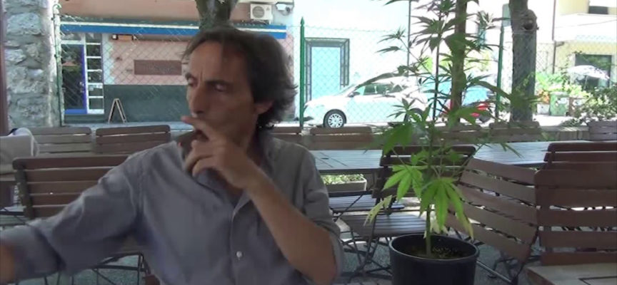 """Trovato con 22 kg di canapa in casa: il """"dottor Cannabis"""" va in carcere"""