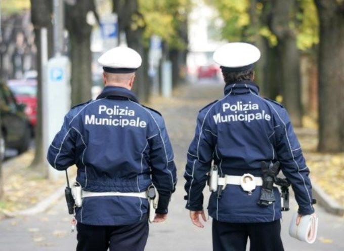 concorso per 19 posti da agente di polizia municipale e quello per 5 posti da esperto in materia tecnica ingegnere o architetto.
