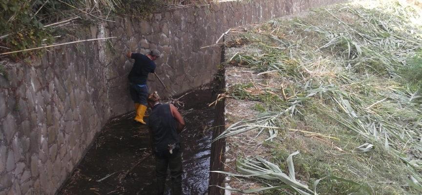 pulizia autunnale dei corsi d'acqua della Versilia: appalti e interventi diretti in pianura, collaborazioni con l'Unione dei Comuni nelle zone montane