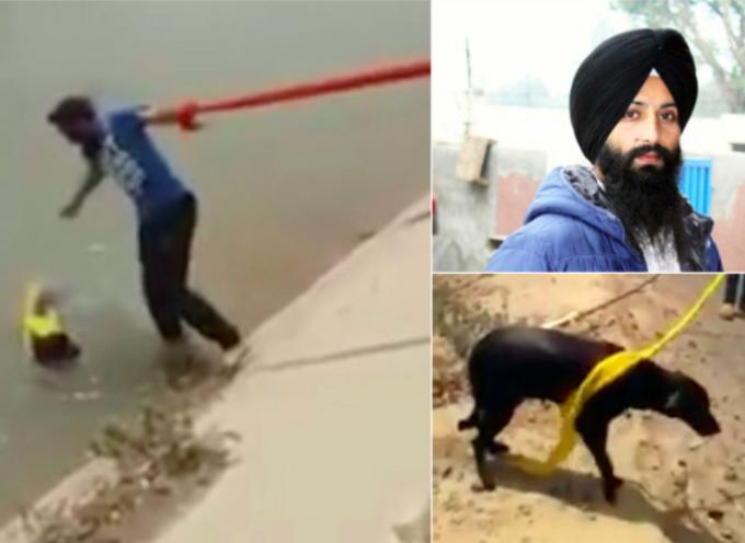 Un uomo sikh si toglie il turbante e lo usa per salvare il cane che sta annegando