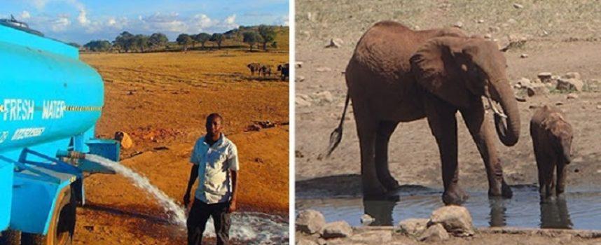 Ogni giorno quest'uomo fa kilometri per fornire acqua agli animali selvatici assetati