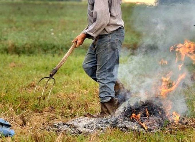 prorogato al 30 settembre il divieto di abbruciamento di residui vegetali e agricoli e forestali