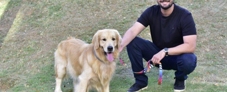 Giustizia: la nuova legge prevede una multa fino a $ 684 per coloro che investono e maltrattano i cani