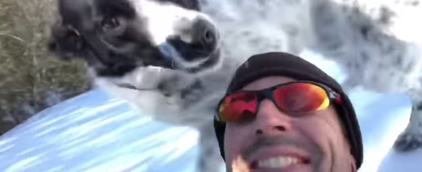 All'uomo gli viene chiesto di portare a spasso il cane. Con la neve? Idea !