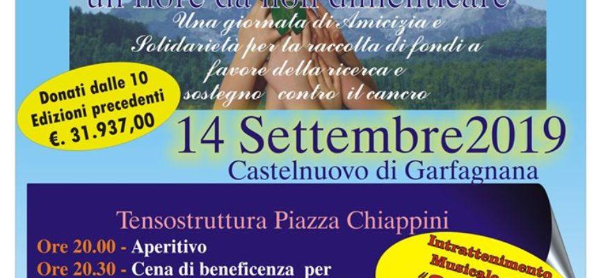 Maria Rosa – Un fiore per non dimenticare – Tensostruttura – Piazzale Chiappini – Castelnuovo di Garfagnana