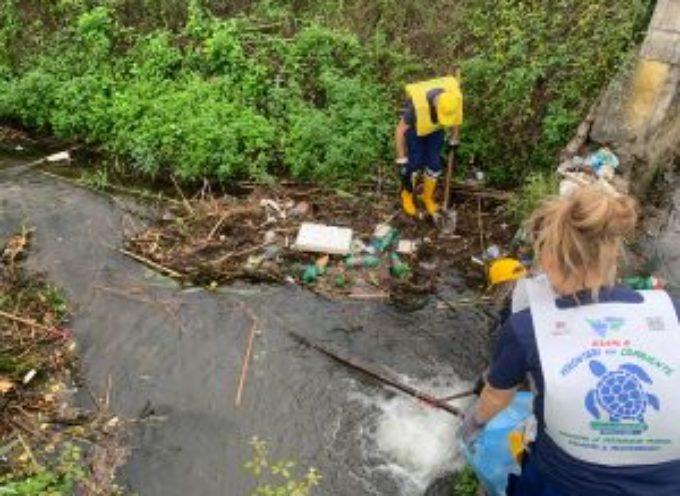 Nascono i volontari per l'ambiente, impegnati un sabato ogni mese per eliminare la plastica