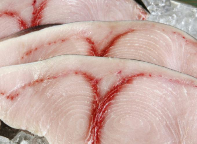 Nel pesce c'è il mercurio. Ministero salute ritira tranci di pesce smeriglio decongelato