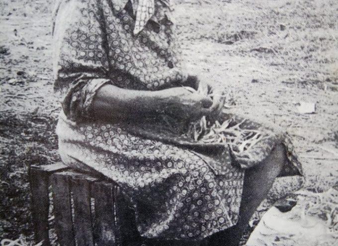 I fagioli, la carne dei poveri…