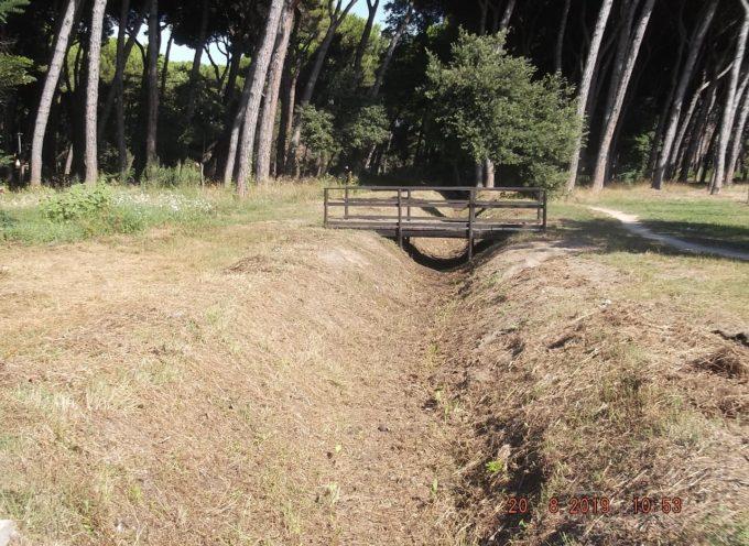 A Viareggio, abbiamo pulito i Fossi della Pineta di Ponente