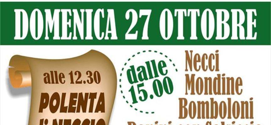 TORNA A CAMPORGIANO LOCALITA' ROCCALBERTI LA CASTAGNATA