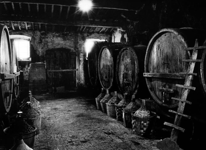 Primo frutto della vendemmia è il vino rosso novello,