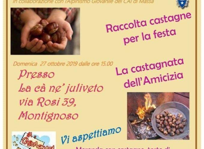 Autismo Apuania Onlus – Raccolta castagne, sabato 12 ottobre, e Castagnata dell'Amicizia domenica 27