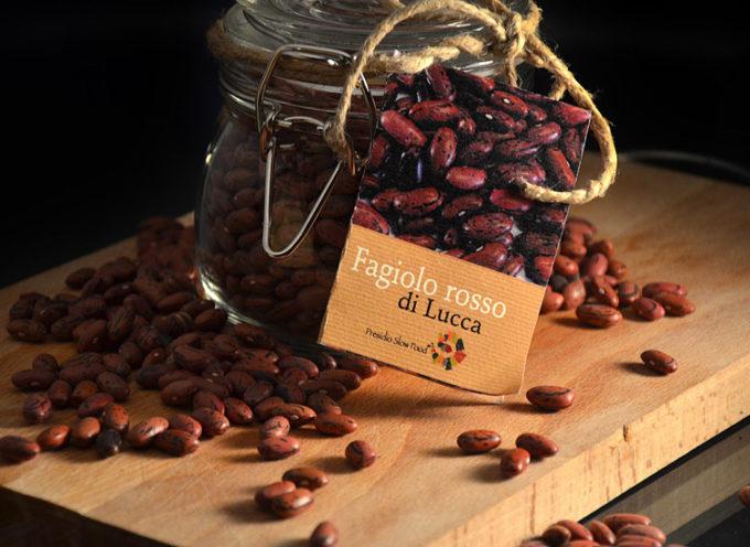 Il presidio Slow Food del fagiolo Rosso di Lucca in Korea, ospite di una importante manifestazione su agricoltura e cibo.