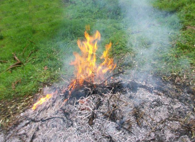 PORCARI – Dal 1 novembre divieto assoluto di bruciature di biomasse