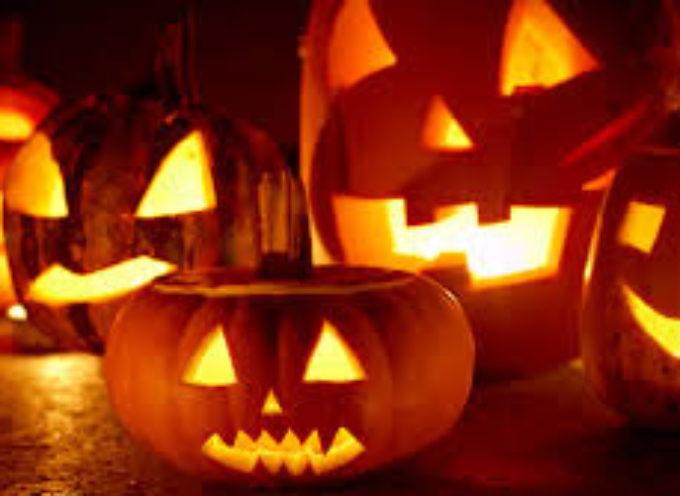 """Il Gruppo di Opposizione """"Orgoglio Comune"""" Borgo a Mozzano, chiede delucidazioni sulla festa di Halloween !!!"""