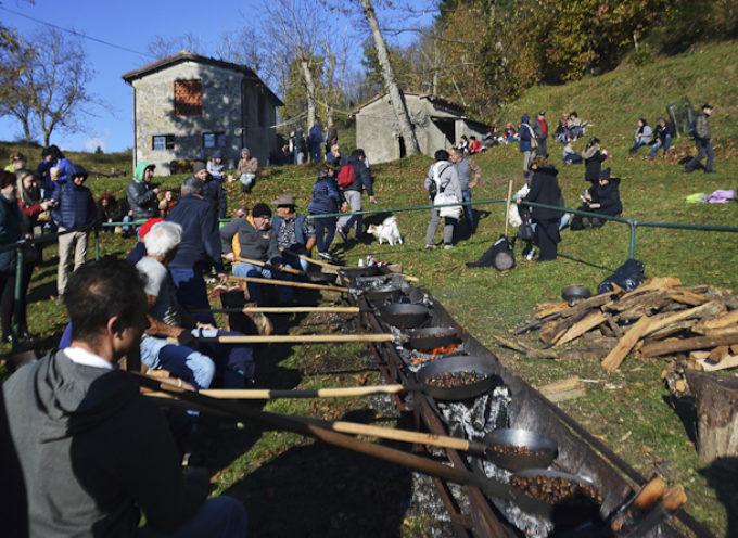 Domenica 27 ottobre, torna la Festa della Castagna a Lupinaia,