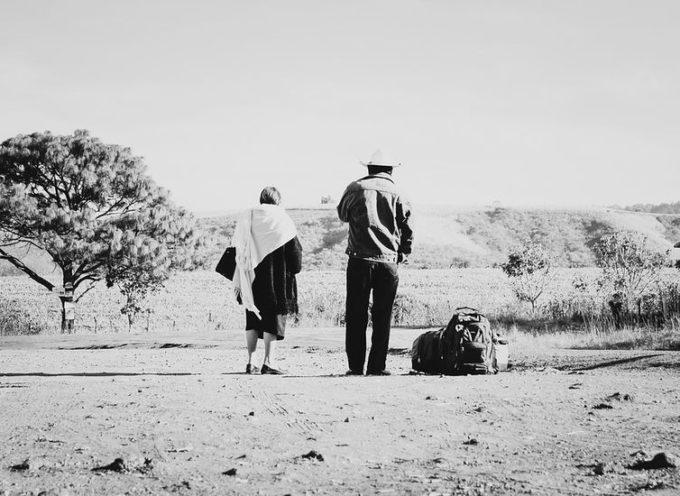 """""""Terra e guerra – Un anno di vita contadina"""". Questo il titolo del libro di Amedeo Giannini"""