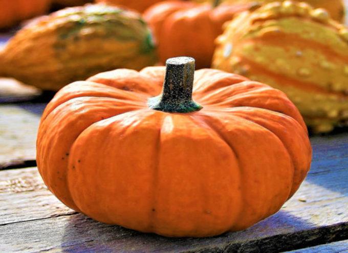 Zucca: i benefici per salute e bellezza del simbolo di Halloween