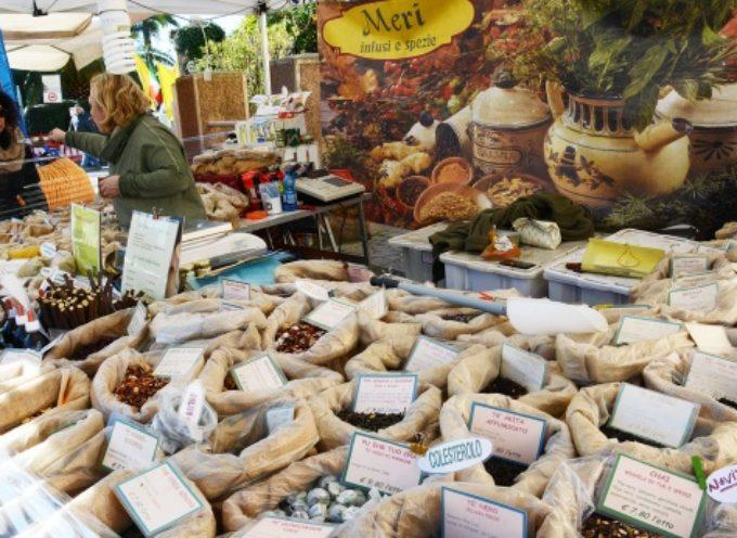PIETRASANTA – San Martino: nel centro storico la festa d'autunno