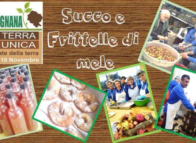GARFAGNANA TERRA UNICA  –  Il Gruppo Autieri (Anai Garfagnana ) presenta nel proprio stand un originalissimo SUCCO DI MELE e MELE FRITTE