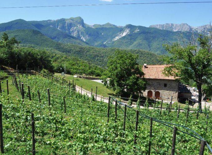 Il Parco delle Alpi Apuane a Garfagnana Terra Unica per presentare i progetti del recupero qualitativo di un'agricoltura di montagna