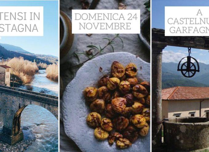 In occasione della Castagnata alla Fortezza di Mont'Alfonso, domenica 24 novembre andremo alla scoperta di Castelnuovo di Garfagnana,