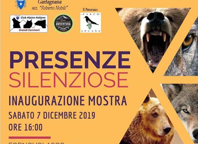 """FORNOVOLASCO –  Inaugurazione mostra """"Presenze silenziose"""" del Club Alpino Italiano"""