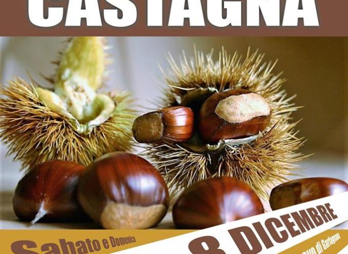 CASTELNUOVO DI GARFAGNANA – LA CITTA DELLA CASTAGNA 7 E 8 DICEMBRE