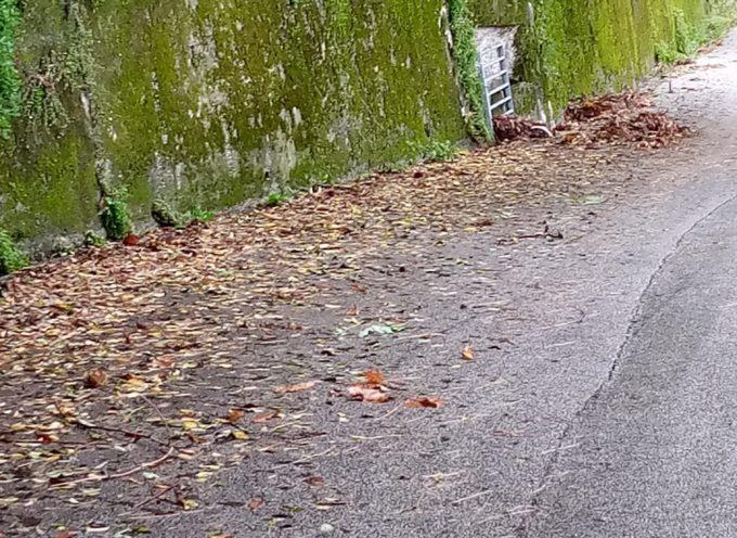 Stazzema Bene Comune – La manutenzione del territorio, come dei cimiteri, spetta all'Amministrazione comunale e non ai cittadini