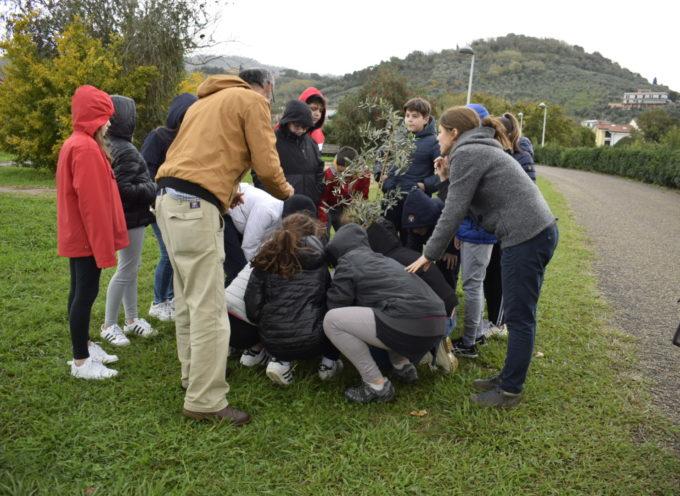 MASSAROSA – Il gruppo consigliare delle Lega 'regala' il Natale alle frazioni
