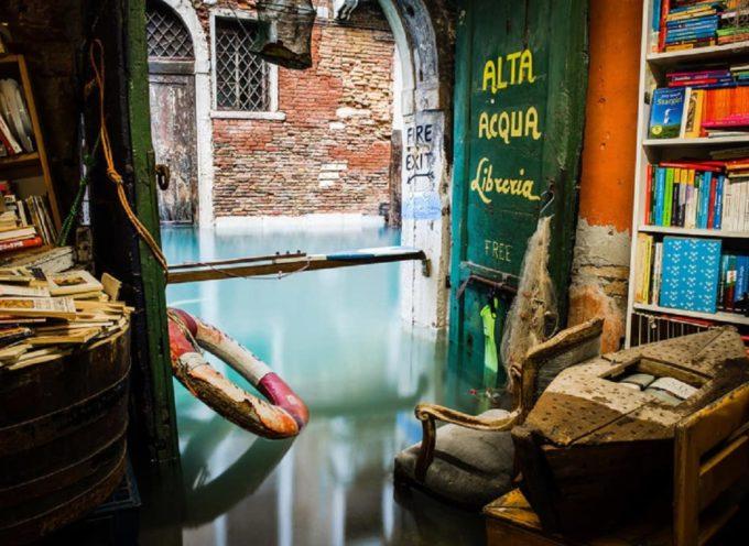 La meravigliosa libreria Acqua Alta di Venezia è completamente sommersa: centinaia i libri distrutti