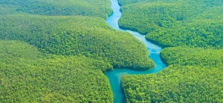 L'AMAZZONIA AL CENTRO DI UN INCONTRO IN PROGRAMMA VENERDI' 15 NOVEMBRE AL POLO CULTURALE ARTEMISIA