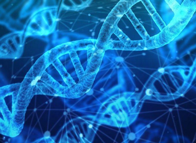 Dante Labs annuncia Ulysses: il nuovo progetto completo di sequenziamento di 100.000 genomi di riferimento mediterranei