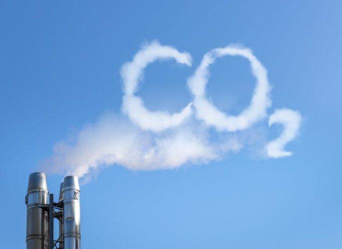 Sistema Ambiente – Lucense per perseguiregli obiettivi della strategia di sostenibilità ambientale 2030
