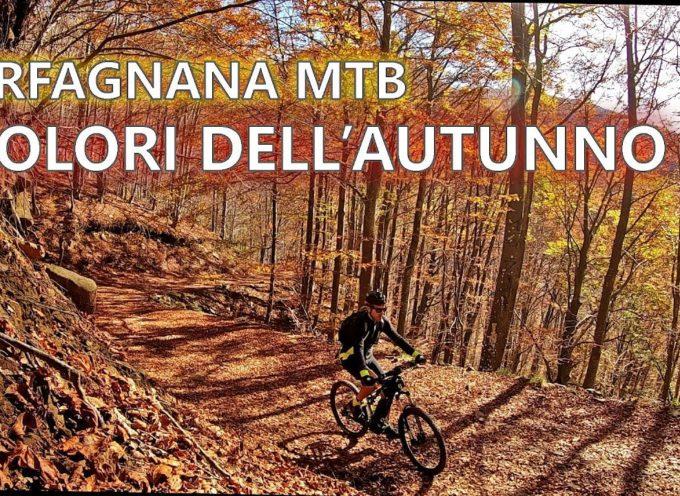 In MTB alla scoperta dei colori dell'autunno in Garfagnana