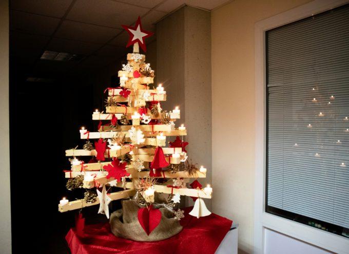 Asl: gli amministrativi della Valle del Serchio si aggiudicano il premio per l'albero di Natale più bello