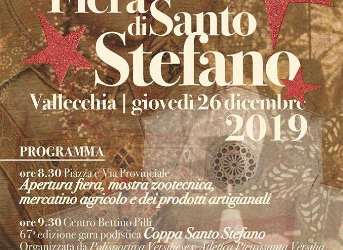 Il tradizionale appuntamento con la Fiera di S. Stefano.