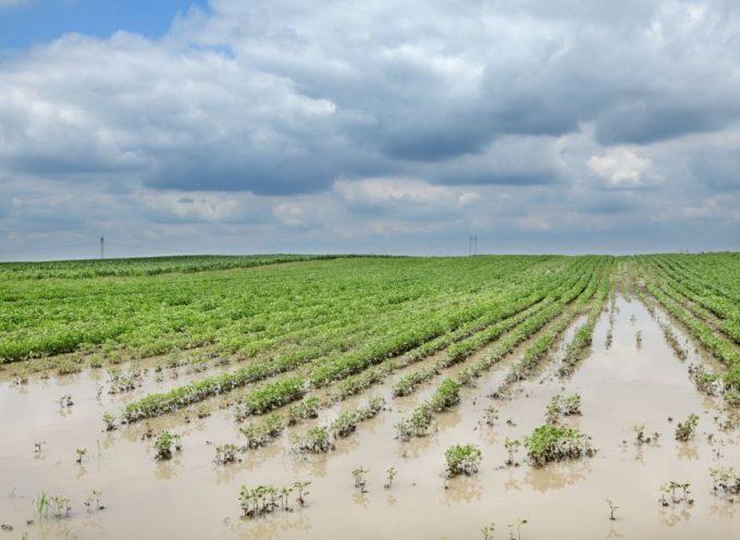 danni da calamità naturali: contributi per investire in prevenzione