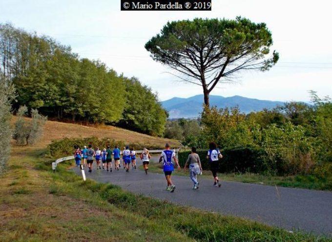 QUECETA – 43esima edizione della marcia Collina-Lago