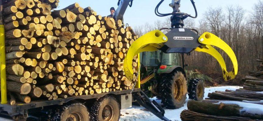 imprese agricole e forestali, nasce l'albo regionale