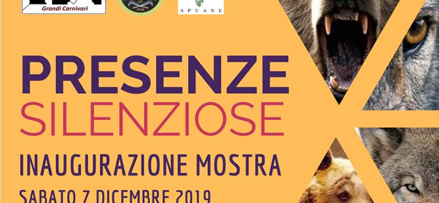 """presso l'Ostello Alpi Apuane a Fornovolasco  SI INAUGURA la mostra didattica """"Presenze Silenziose"""""""