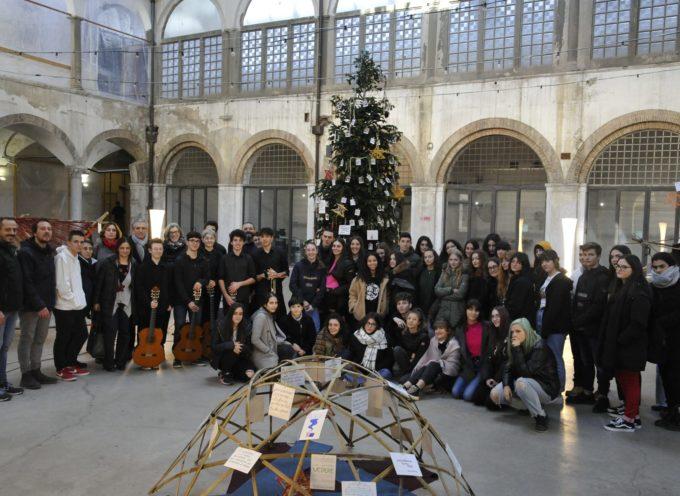 Il Mercato del Carmine si accende con l'albero di Natale dei Diritti Umani
