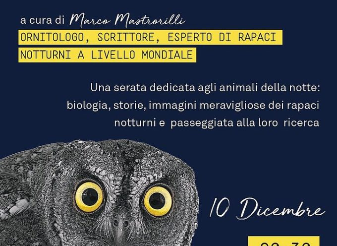 il famoso ornitologo Marco Mastrorilli sarà ad Artémisia per parlare dei 'Segreti di gufi e civette'