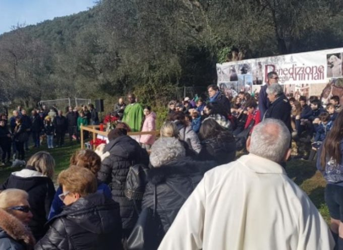 Tradizioni: un'Arca di Noè alla Pieve di Valdicastello, tante famiglie alla festa degli animali