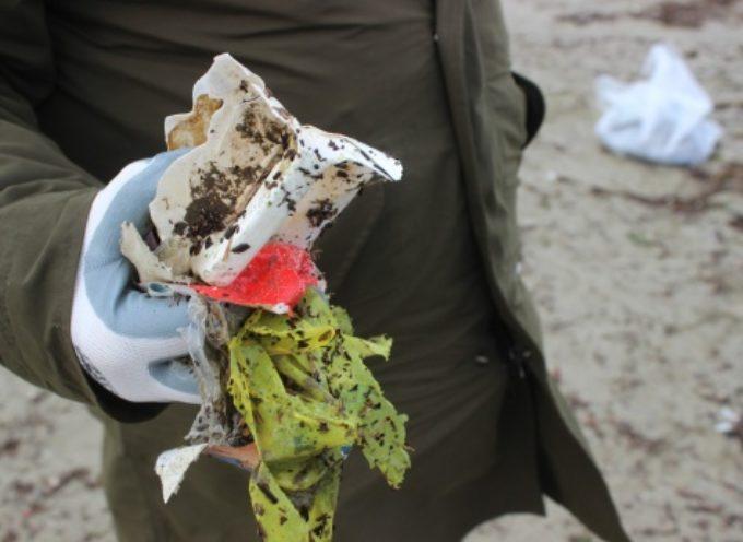 raccolta rifiuti in spiaggia, iscrizioni aperte presso lo sportello Consulta del Volontariato