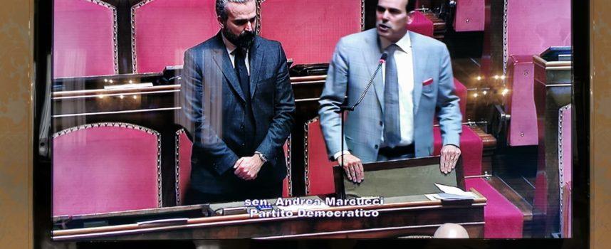 La Presidente del Senato Casellati alla fine ha gettato la maschera: