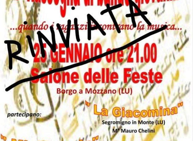 La Rassegna di bande giovanili prevista per sabato 25 gennaio a Borgo a Mozzano è rimandata,