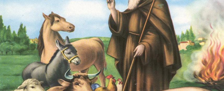 l Santo del giorno, 17 Gennaio: S. Antonio Abate, protettore degli animali,
