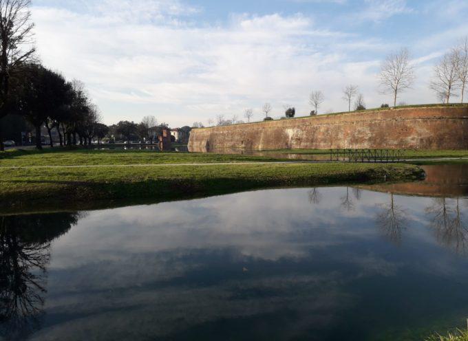 Spalti delle Mura di Lucca, immediato intervento del Consorzio per ripristinare la paratia guasta